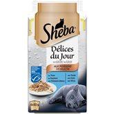 Sheba Délice du Jour en gelée aux poissons pour chats les 6 boites de 50 g